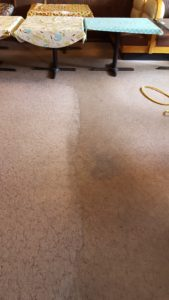 see the differnce when we clean your carpet