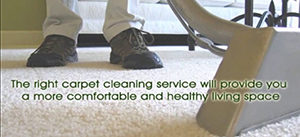carpet cleaning st joseph mi